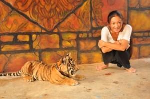 TigerTemple8