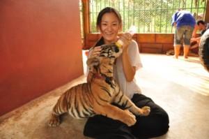 TigerTemple6