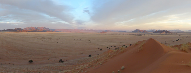 A random desert panorama from our trek into the surreal, alien landscapes of the Namibian deserts...