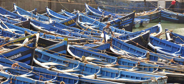 A crowd of blue fishing boats massing in the port of picturesque Essaouira. Everything in the ancient seaside fort is painted a combination of blue & white, making for a perfectly idyllic and relaxing encounter.