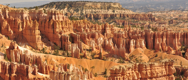 A small snapshot of the stunning architectural masterpiece that forms the Bryce amphitheatre. Innumerable pink, orange and white towers sculpted majestically over millenia into the hillsides and valleys.